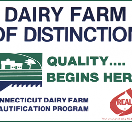 Dairy Farm of Distinction